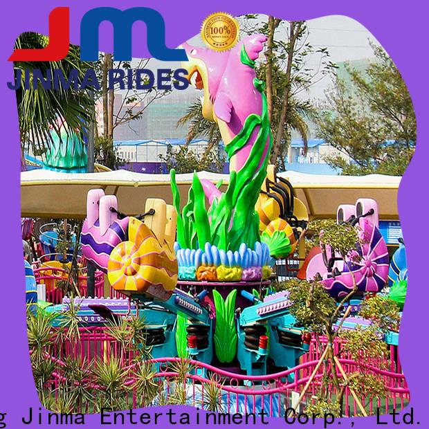Custom ODM kiddie roller coaster for sale for business for promotion
